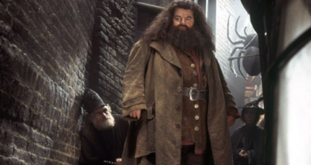 Hagrid's father