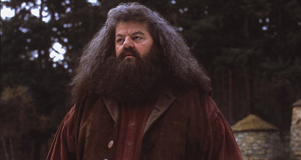 Hagrid's family