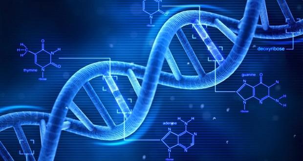 Genetic change