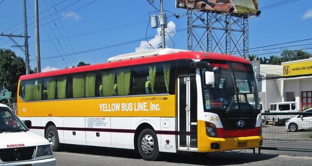 Dan bus 4