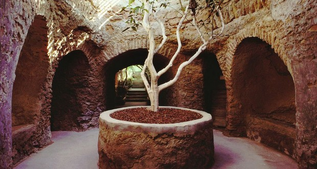 Underground garden