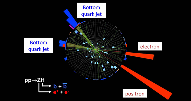 Bottom quarks