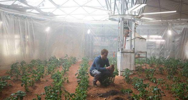 Martian Potatoes