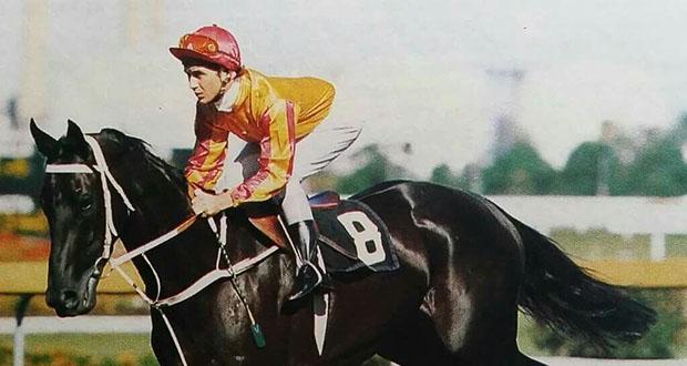 Great American Horse Race