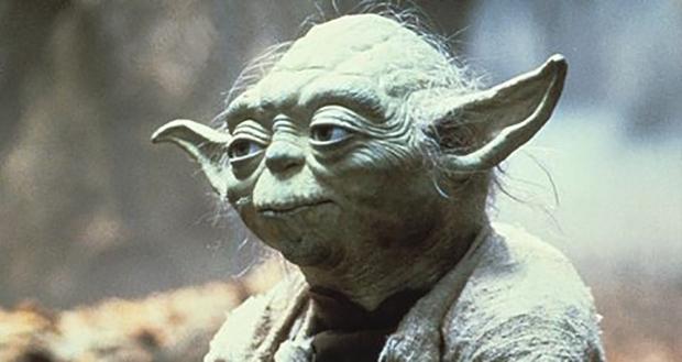 Yoda's race