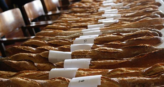Paris baguettes contest