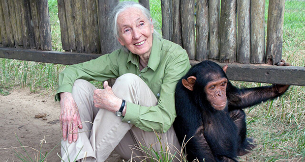 Dr.Jane Goodall