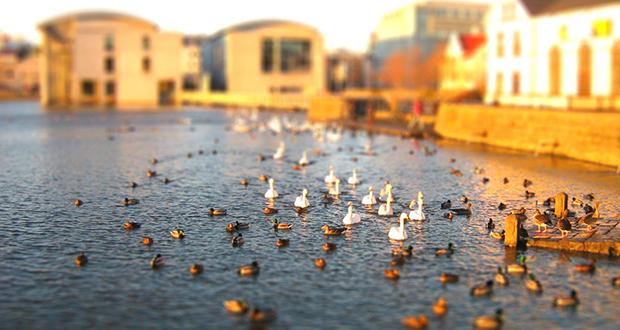 Hotwater ponds