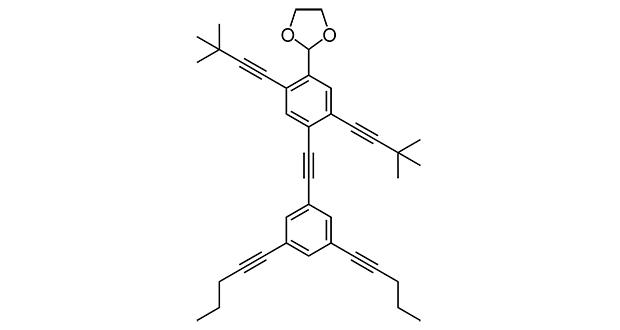 NanoPutians