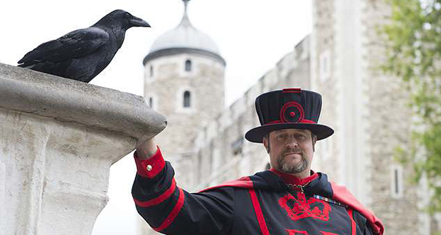 Ravenmaster