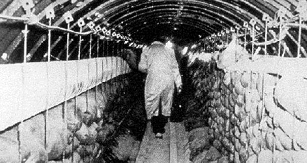 FBI Tunnel
