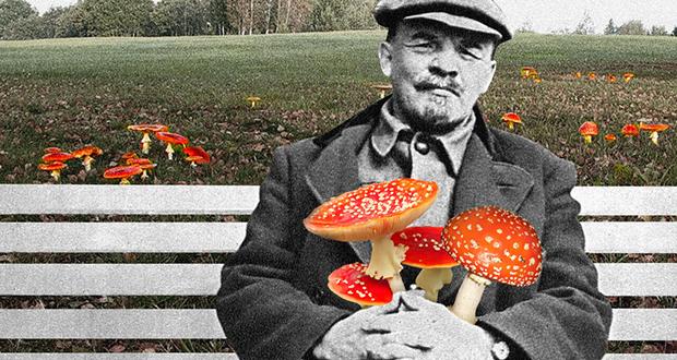Lenin Was a Mushroom