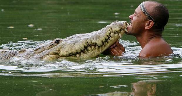Pocho The Croc