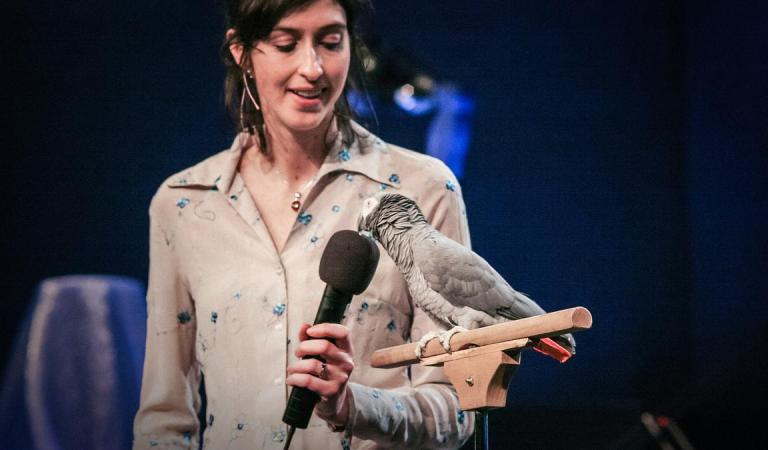 Einstein: the African Grey Parrot from Knoxville Zoo That Gave a TED Talk