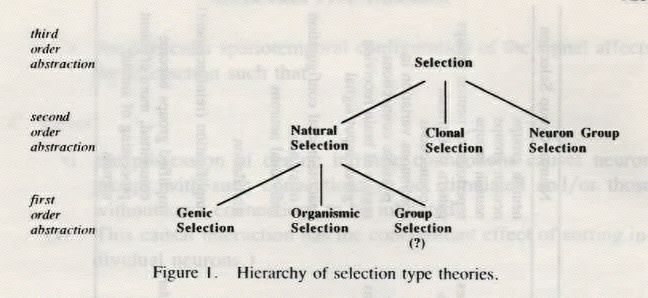 SELECTION TYPE THEORIES*