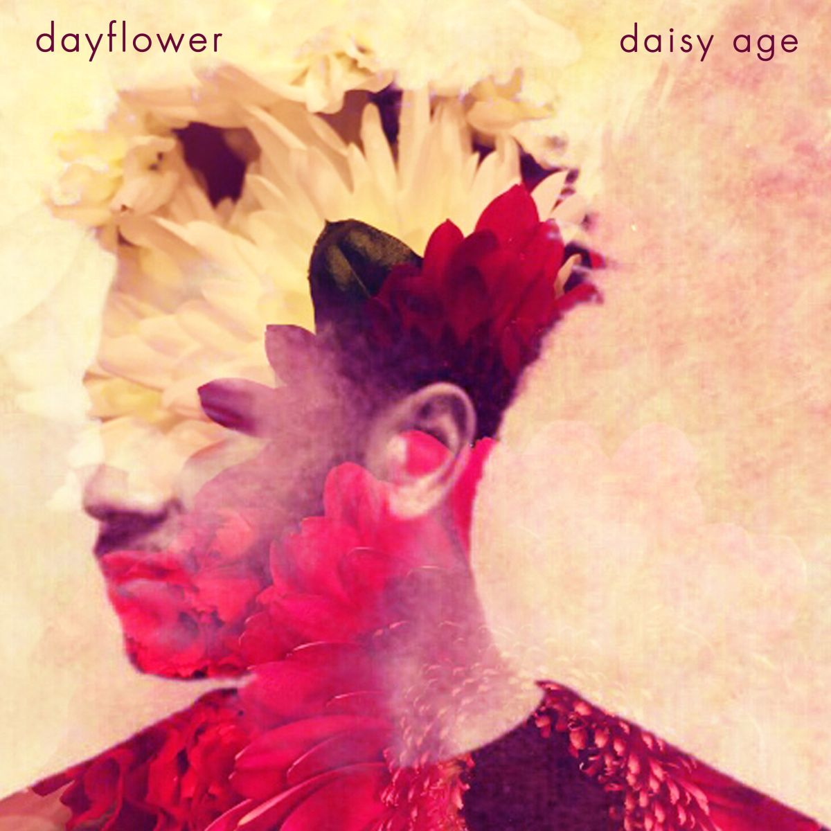 Dayflower - Daisy Age (single and video)