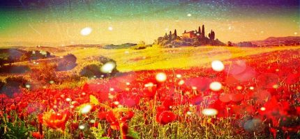 Dream of Poppies playlist