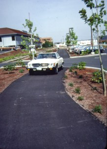 Newly completed path near SW. Landing Dr., 1980