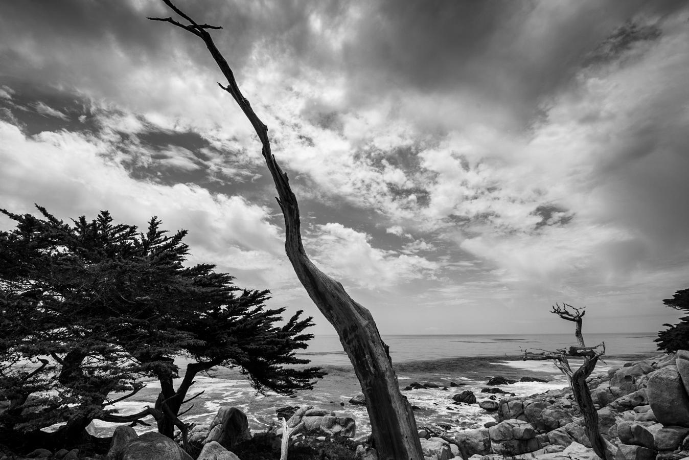 B&W California coastline