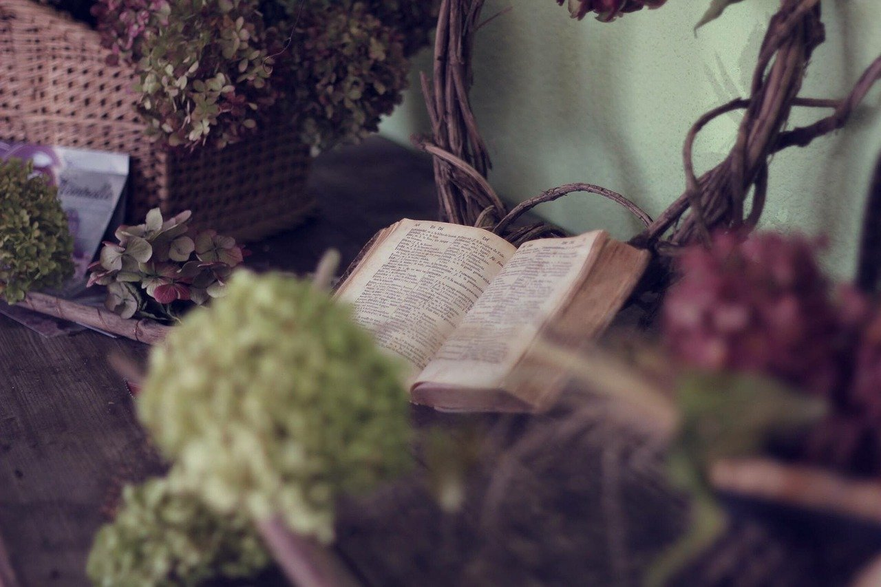 book, flowers, life