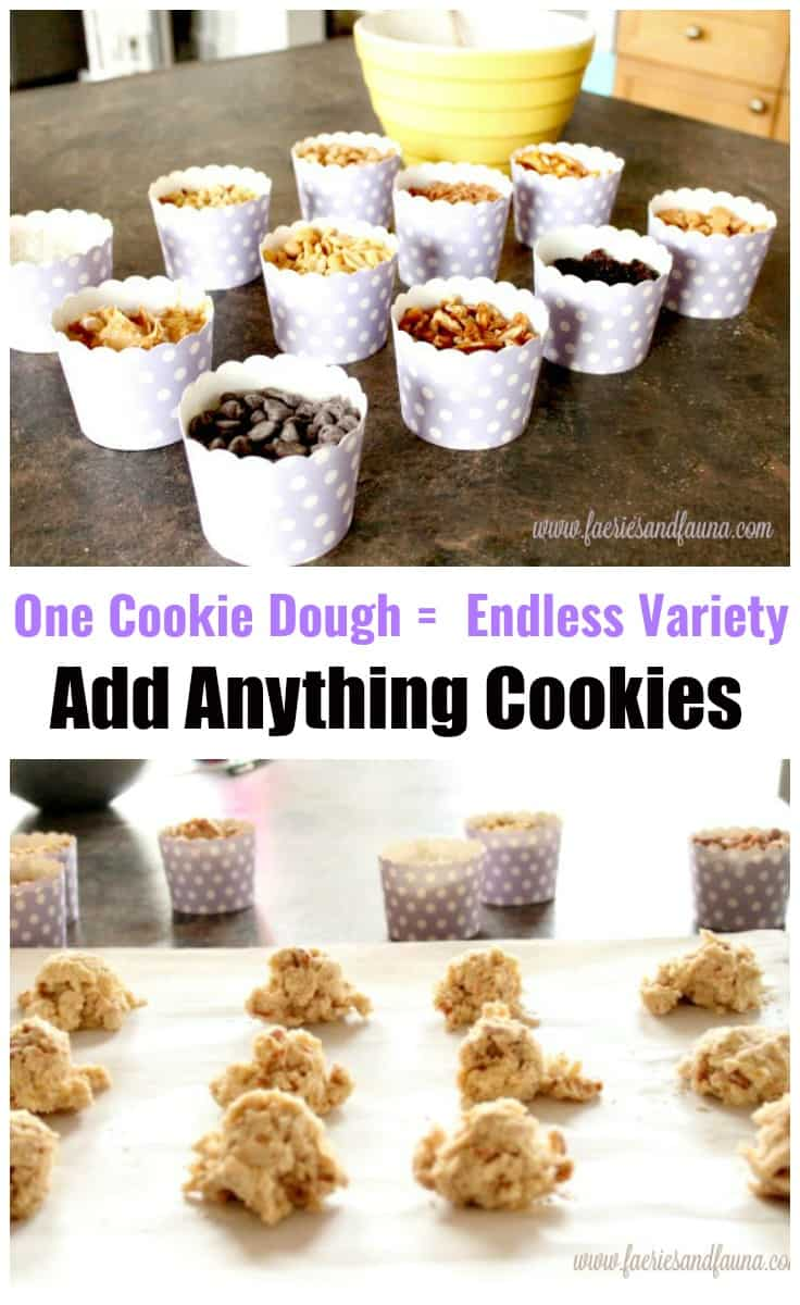 One Cookie Dough Makes an Endless Variety of Cookies Cookie Recipe, Drop Cookies, Cookies, Chocolate Chip Cookie Recipe, Peanut Butter Cookie Recipe, Coconut Cookies Recipe, Raisin Cookie Recipe, Add Anything Cookie Recipe, Add Anything Cookies