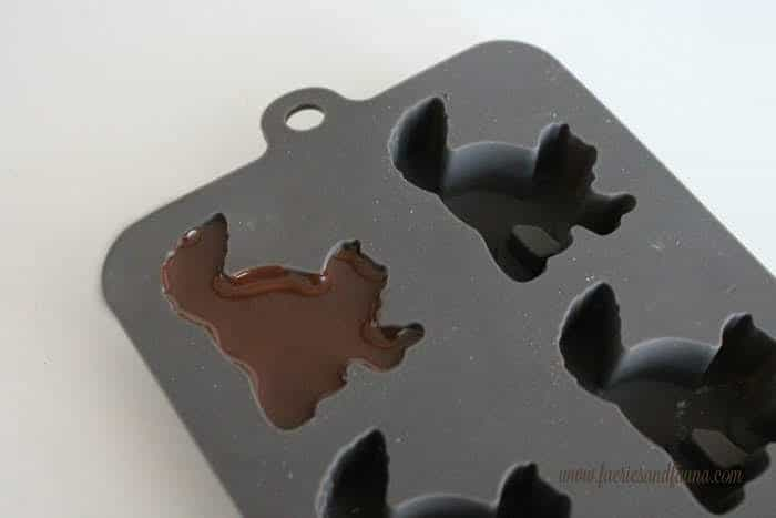 Halloween brownie chocolate cat mold with chocolate filling.