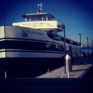 Our Flagship Cruises boat for that morning's whale watching tour.