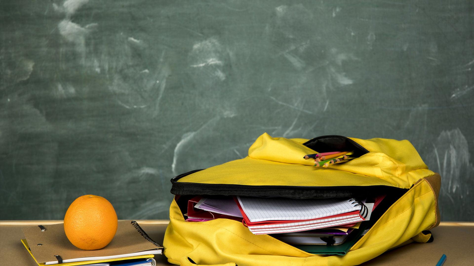 slika-pet-back-to-school