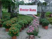 monstersmum[1]