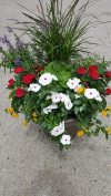 """Are your flowering containers in need of refreshing? Bring them in and we'll replant them with our beautiful seasonal flowers. 17"""" Fahr Container re planted $25."""