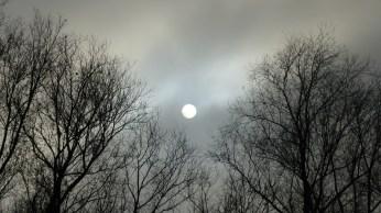 nebel-sonne-625