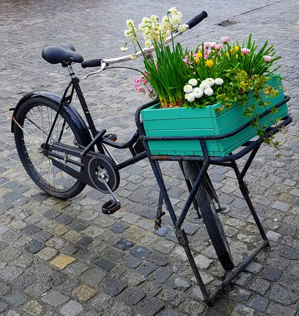 Viktor die Blumenfee und der Regen  Radfahren in und um Regensburg