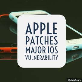 apple_patch2