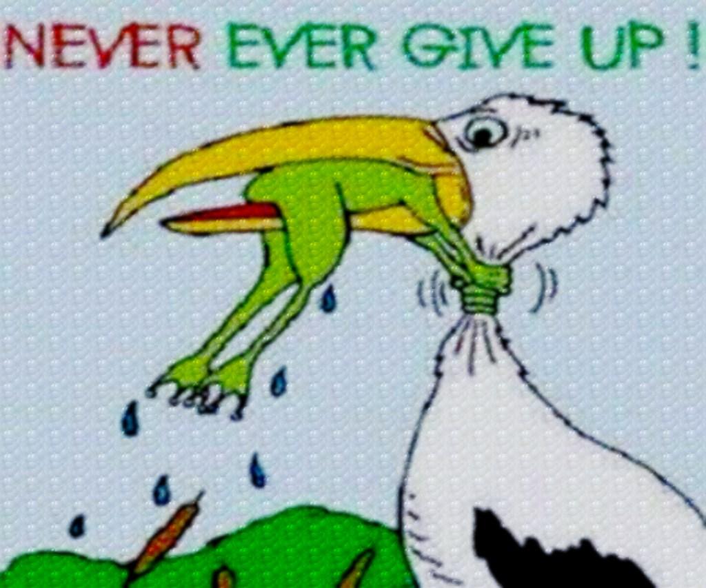 https://i0.wp.com/failuretolisten.com/wp-content/uploads/2013/11/never-give-upeditwpattern.jpg?resize=1024%2C853&ssl=1