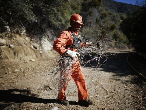 Prison inmate Kevin Black is among thousands of convicted felons who form the backbone of California's wildfire protection force. Reuters/Lucy Nicholson