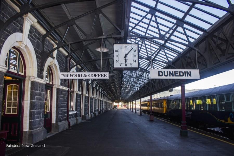 Dunedin, la ciudad de los estudiantes
