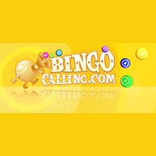 Bingo Calling Casino Review (2020)