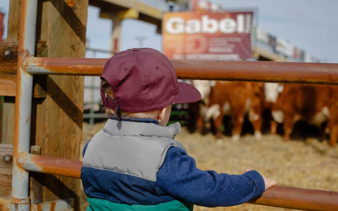 AUDIO: Rachel Gabel addresses the ongoing fight for preserving rural Colorado, agriculture