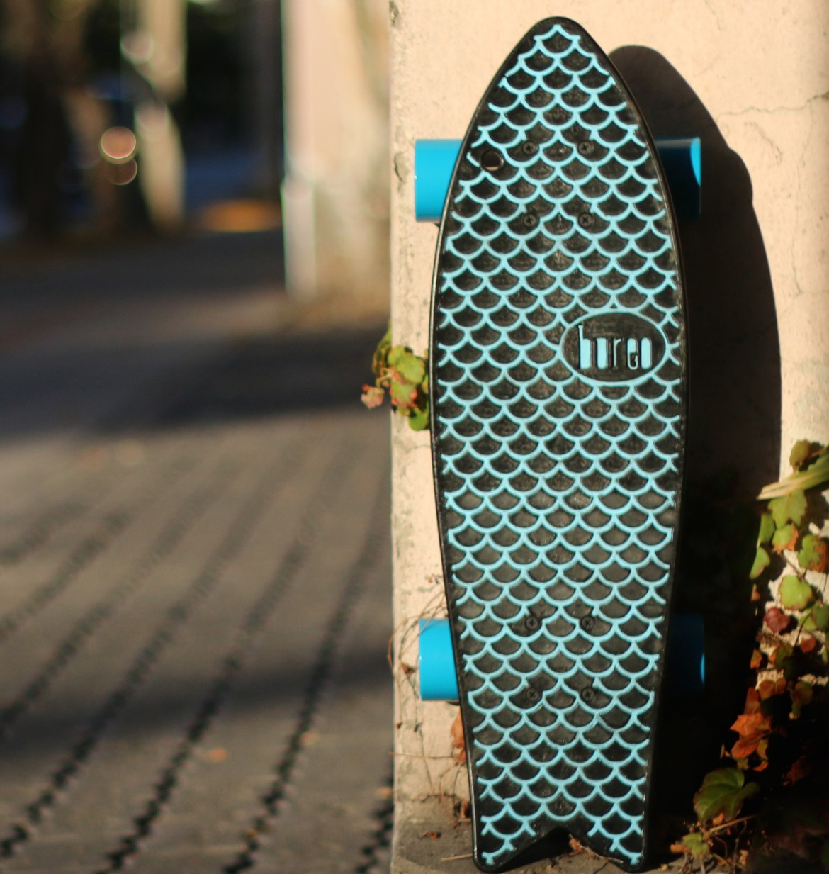 Sustain_Skateboard_02
