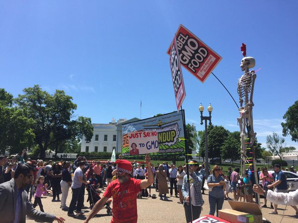 Anti-Monsanto protest at the White House (photo: Occupy Monsanto)