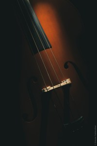 double bass, still life photography talk