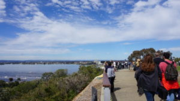 People pack into Kings Park, with the rivers in full view.