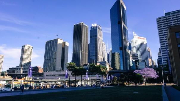 Amazing Sydney.