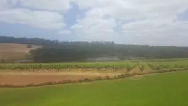Hamelin Bay Winery