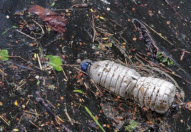 Pollution bouteille plastique dans la nature