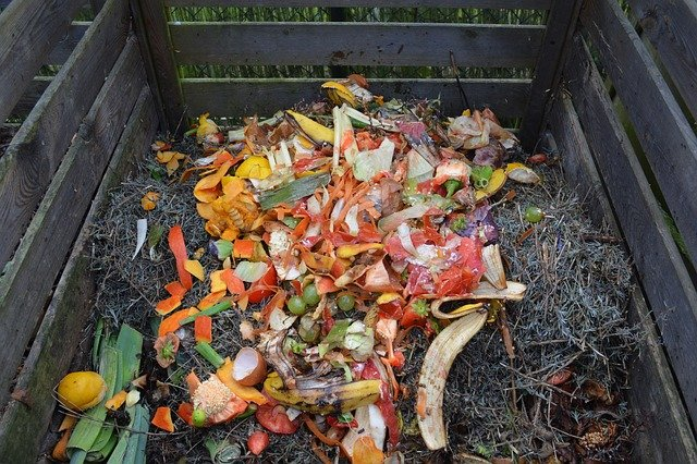 Ordures ménagères et compost