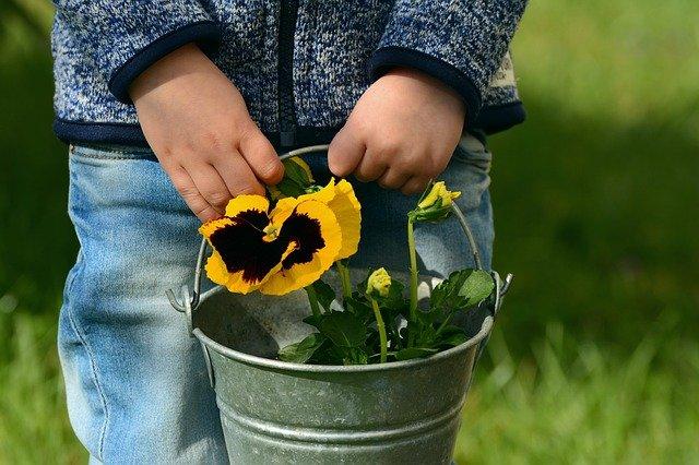 Activité jardinage maternelle