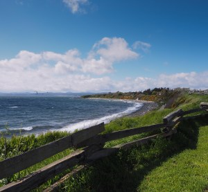 Shows ocean, cliffs and green field in foreground with split rail fence