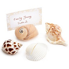 Seashell Escort Cards - Fairly Southern