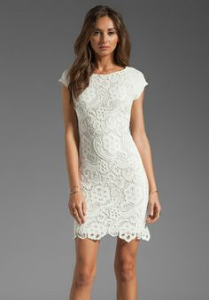 All lace dress by Rebecca Taylor - Perfect rehearsal dinner LWD! - Fairly Southern